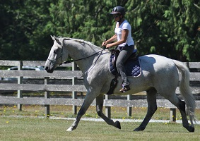 Janice and Astron, Dressage Naturally, Arlington, Washington.jpg