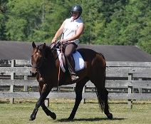 Julie Spink and Codee, Dressage Naturally, Arlington, Wash..jpg